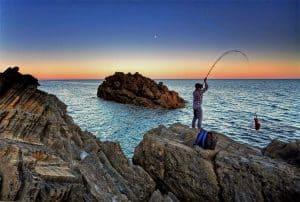 Pesca de mar (mejores cebos surfcasting)