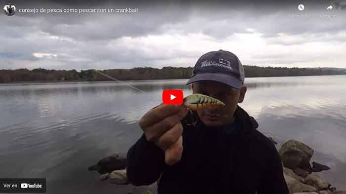 Como pescar con crankbait
